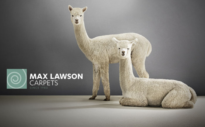 Max Lawson Carpets Brand and Website Design